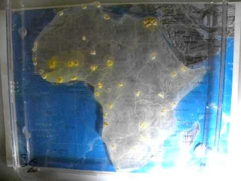 Biological evaluation of Trans-African highways