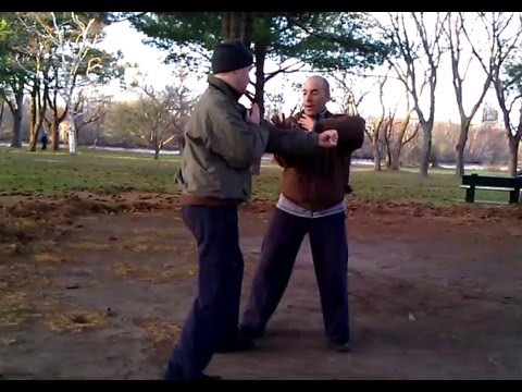 Marin Spivack Chen Taijiquan Form/Method 2012 # 6 Sanshou Variations, Drills, & Creative Practice Image 1