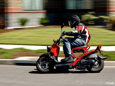Honda Ruckus  2009 Scooter Review