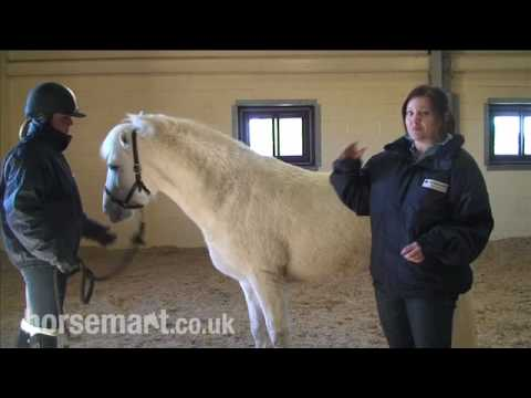 The Blue Cross:How to tell if your horse is overweight.mp4