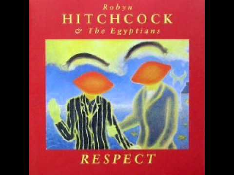Robyn Hitchcock - Railway Shoes
