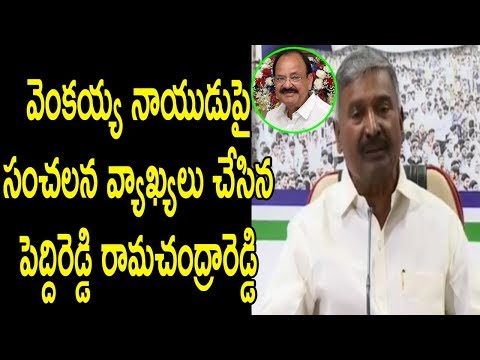 YSRCP Peddi Reddy Rama Chandar Reddy Comments On Speaker Venkaih Naidu BJP AP GOVT | Cinema Politics