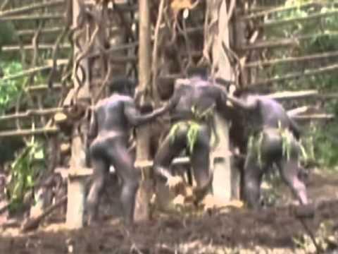 Land Divers of Vanuatu