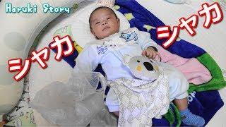 ビニール袋のシャカシャカが大好きな赤ちゃん Funny Baby Vlog - 日台ハーフ赤ちゃん・ハルキの成長記録