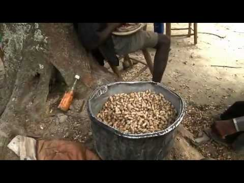 Haiti: Life saving food for malnourished children
