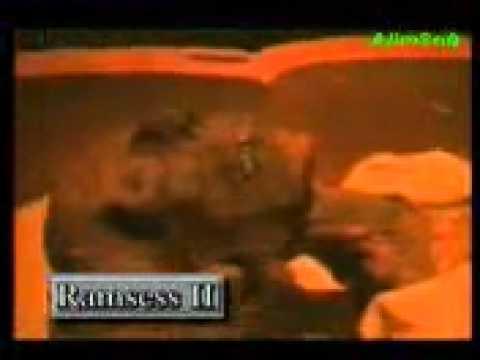 Ferawon Bangla.mp4 video