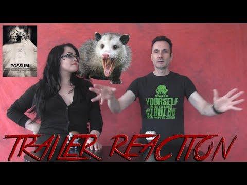 Possum Trailer Reaction