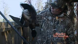 Bradley Duck Hunting Club - Late Season Mallards