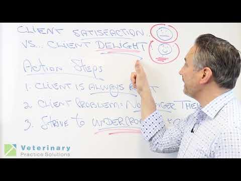 Client Satisfaction vs. Client Delight