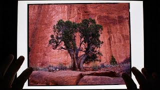 Colorado Plateau 2017: (Film Reveal) Ben Horne Large Format Landscape Photography