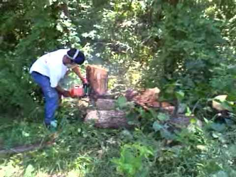 STIHL Professional Chain Saw Performance Test