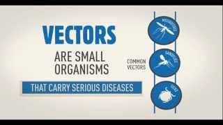 WHO Vector borne disease animation WHD2014