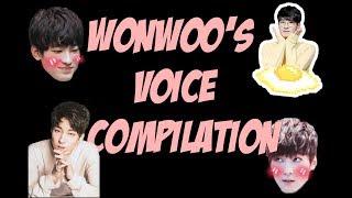 JEON WONWOO TALKING, RAPPING, SINGING ETC. (FEAT. SEVENTEEN) || ???