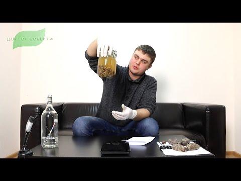 Как приготовить струю бобра - видео
