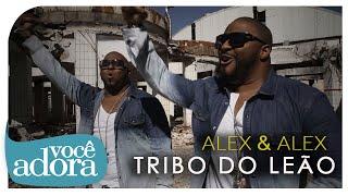 Alex e Alex - Tribo do Leão (Clipe Oficial) [Álbum Tribo do Leão]