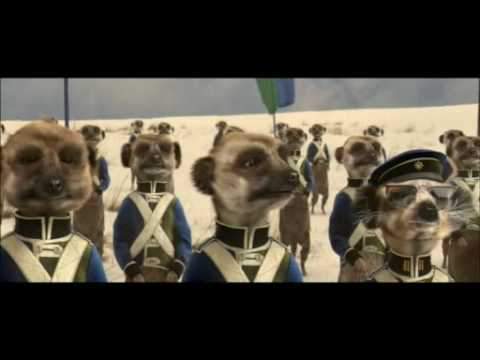 The Battle of Fearlessness - Compare The Meerkat