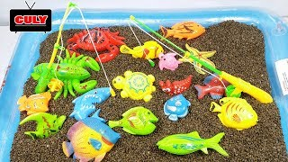 fishing toy in the sandy pool - toy for kids