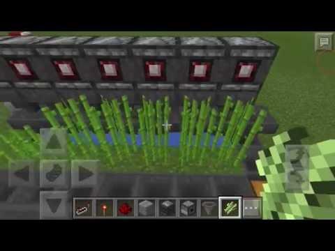 Minecraft pe : Cách làm máy Auto Farm Mía đơn giản hiện đại ☑