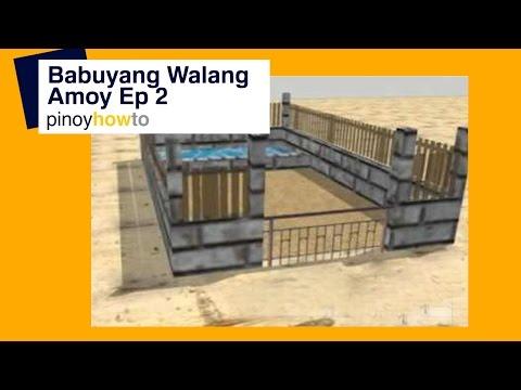 Baboyang Walang Amoy How to Raise Pigs