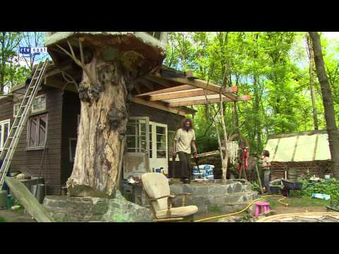 Man in Dalfsen bouwt huis van levende bomen