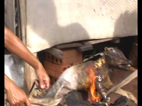 Dog barbeque in Cambodia