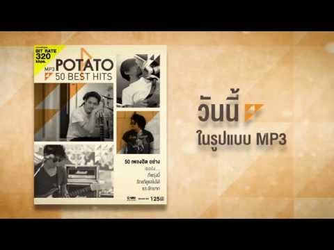 MP3 POTATO 50 BEST HITS