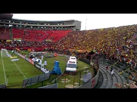 Torcida do Sport Recife