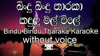 Bindu Bindu Tharaka Karaoke (without voice) බිංදු බිංදු තාරකා කඳුළු මල් විලේ