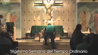 San Simón y Judas apóstoles 28 de Octubre de 2014