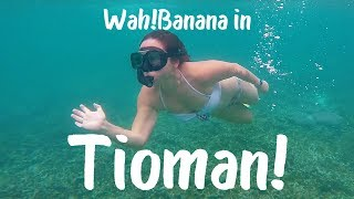 Wah!Banana's 3D2N in Tioman