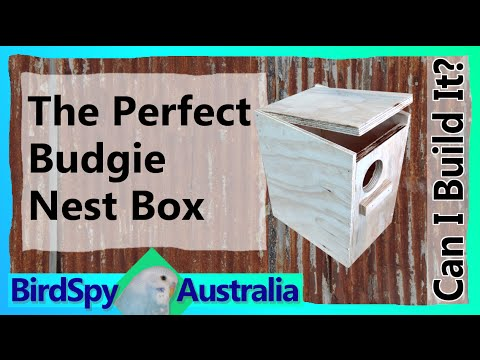 how to build a lovebirds nest box