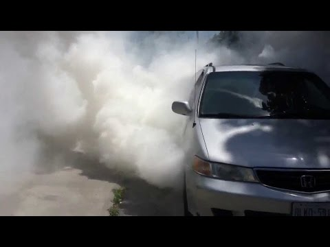 1999 - 2004 Honda Odyssey Compilation (Burnouts. 0-60's. and More!)