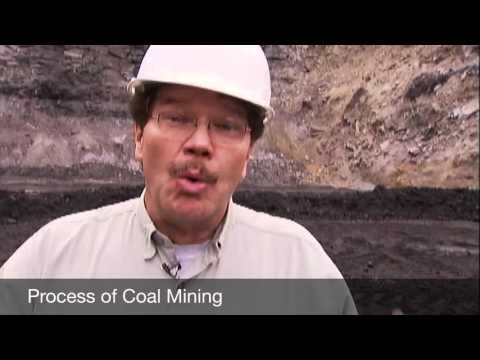 Effects of coal mining on fish populations