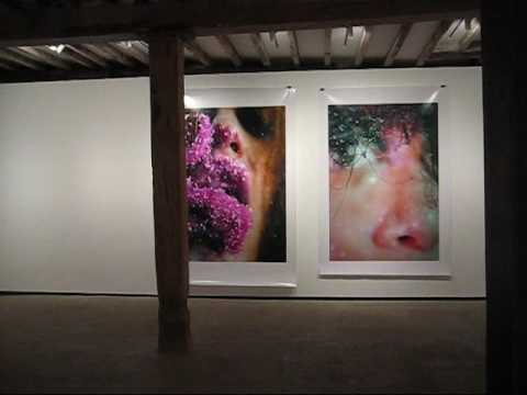 Marilyn Minter at Salon 94, NYC (May 2009)