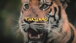 AMAZING THAILAND - A Jakob Owens Film