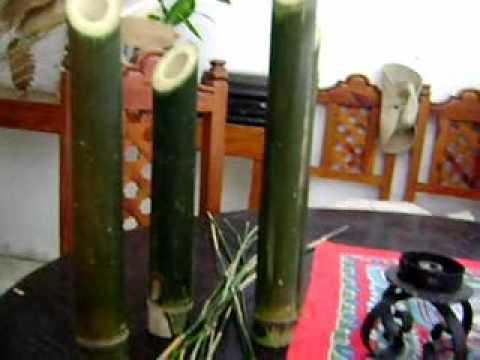 Bambu para artesanos y decoradores