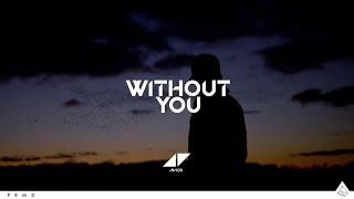 Avicii - Without You ft. Sandro Cavazza (Lyric Video)