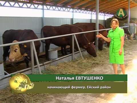 Планета АГРО - фермер Наталья Евтушенко