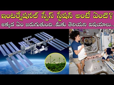 What is International Space Station in Telugu | Unknown Facts about Space in Telugu