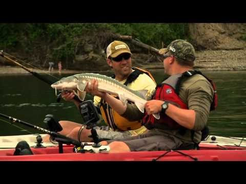TV Segment: Kayak Fishing Oregon with Cody Herman targeting Sturgeon on Outdoor GPS