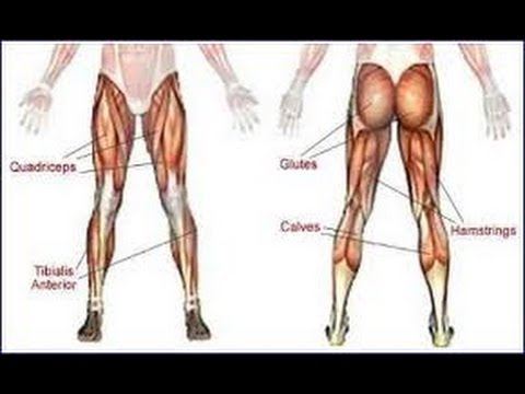 BEST LEG AND AB WORKOUT - YouTube