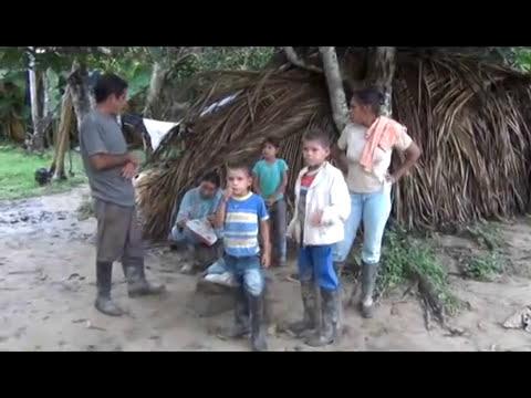 Campesinos de la Rivera del Río Guaviare.  Departamentos del Guainía y el Vichada