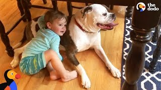 Kid Comforts Dog During Thunderstorm | The Dodo