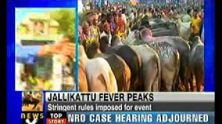 High Court allows 'Jallikattu' with conditions