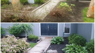 Home Depot: DIY Summer lawn work + Puppy proof your lawn l Father