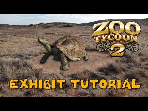 ZT2 Exhibit Tutorial: Galapagos Giant Tortoise