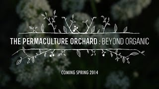 The Permaculture Orchard : Beyond Organic - OFFICIAL TRAILER
