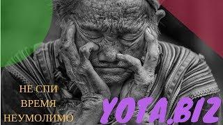 СКАМ  #YOTA.BIZ . ВСЯ ПРАВДА О YOTA . Хайп Yota biz или нет ? КАК ЗАРАБОТАТЬ В ИНТЕРНЕТЕ