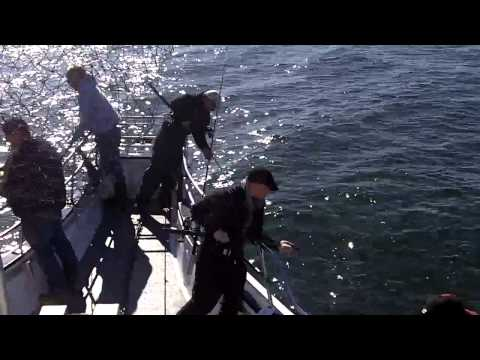 Fishermen/Sandy Hook Blue Fishing Video
