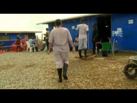 Life of medics combating Ebola on front line in Liberia